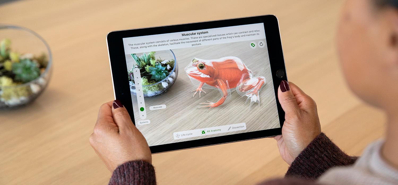 Abbildung Kind mit Apple iPad